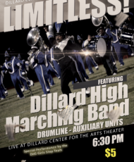 DHS Marching Panthers Present: Limitless 2017